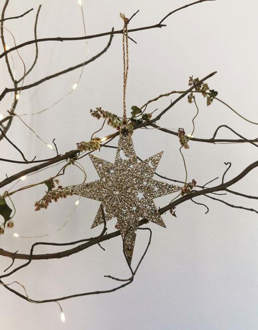 Golden star. Christmas ornament